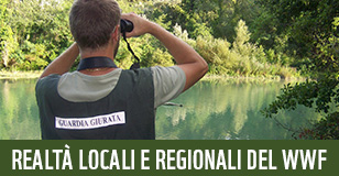 banner Regioni ed OA per global elements homepage