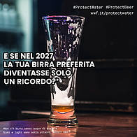 protect water, 2018  	© wwf